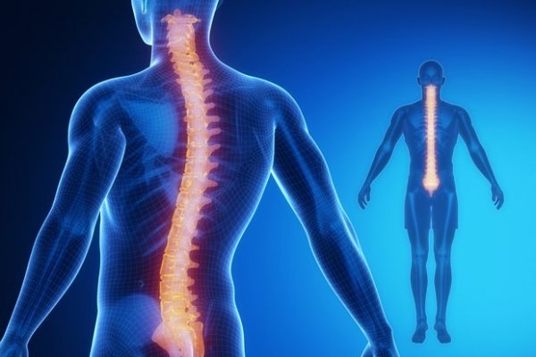 Omurga sağlığını korumanın yolları açıklandı