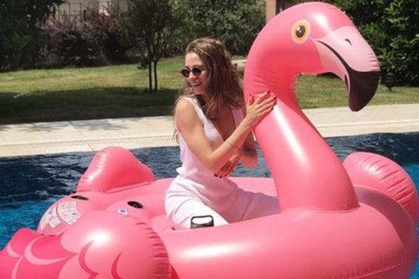 Flamingolulaşmayan bizden değildir