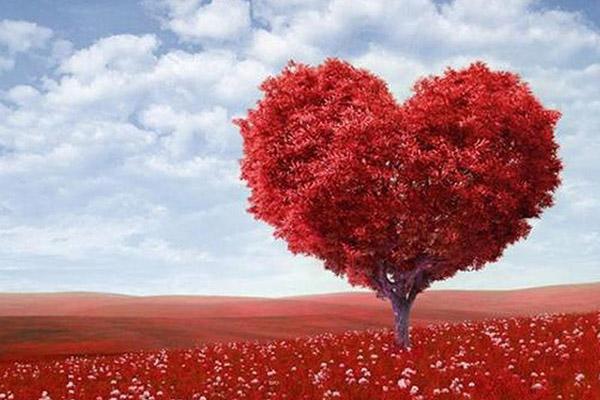 Aşkta hangi renksin?