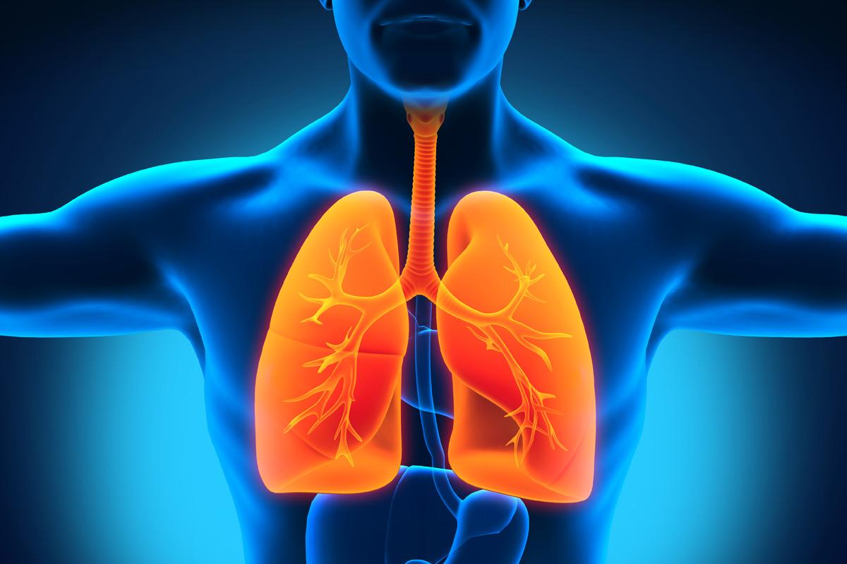 Akciğer kanserinden korunmak için 6 altın kuralı açıklıyoruz